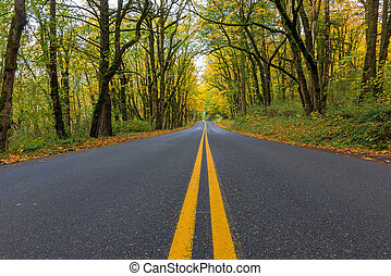 Historic Columbia River Highway Two Way Lanes in Fall -...