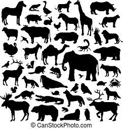 Animals Suilhouette Big Set - Wild and domestic animals and...