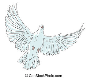 The dove of peace the white bird