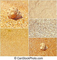 Collage of summer sea photos, seashells on sand, set of toned images