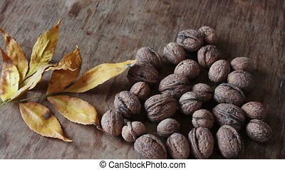 ripe walnuts in a peel - Lots of ripe walnuts in a peel on a...