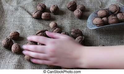 Lot of ripe walnuts with peel and shoulder blade