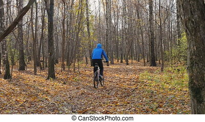 Cyclist rides in the park, for a healthy lifestyle. - A...