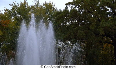 City fountain in summer time - City beauty simple fountain...