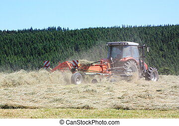 Agriculture, Raking Hay