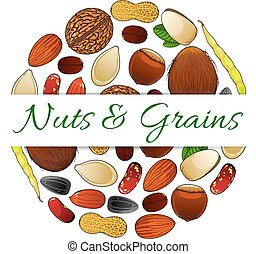 Nutritious nuts and grains elements vector label -...