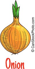 Bulb onion vegetable sketch isolated icon - Onion vegetable...
