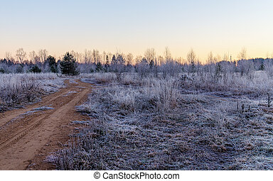 frost in late autumn