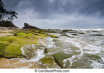 beautiful sea view, wave hitting the rock covered by vibrant...