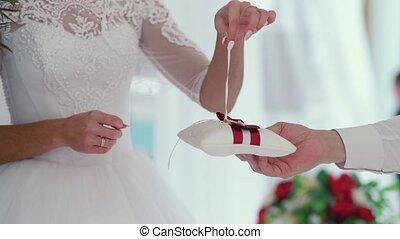 Wedding couple exchanging the rings - Wedding exchange...