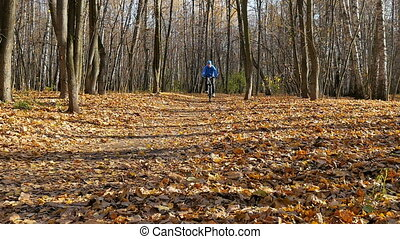 Man riding in the park. - Sportsman riding in the park on a...