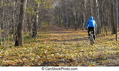 Sportsman riding in the park along the paths. On a sunny...