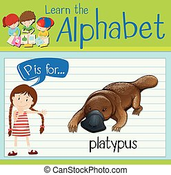 Flashcard letter P is for platypus illustration
