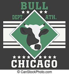 Chicago sport typography t-shirt champion college team bull...