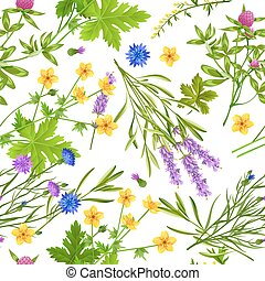 Herbs And Wild Flowers Seamless Pattern - Flat seamless...