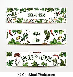 Set of hand drawn banner templates with spices and herbs -...