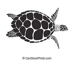 turtle vector symbol - Turtle isolated on white background...