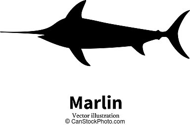 Vector illustration black silhouette fish marlin