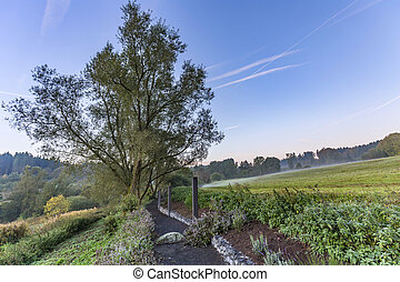 rural eifel landscape in morning light