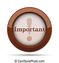 Important icon. Internet button on white background.
