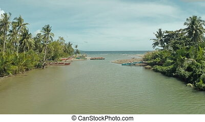 The river flows into the sea. The beautiful nature of the Philippines.