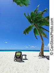palm beach chaise longue - Group deck chairs under an...