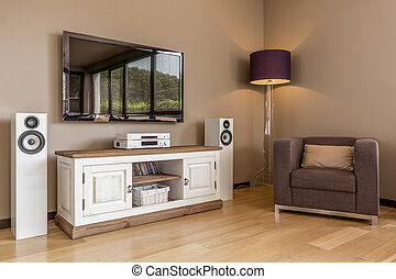 Functional tv living room idea - New living room with tv,...