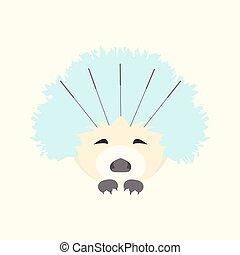 Hedgehog at acupuncture - Cute hedgehog receiving...