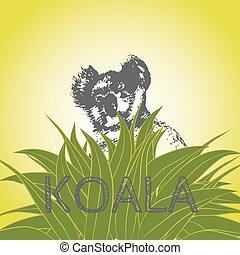 Koala and eucalyptus - Vector illustration of a koala bear...