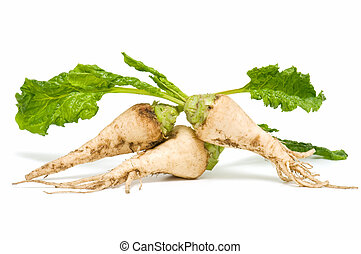 sugar beet on white background