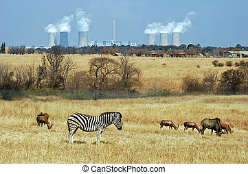 Powerstation - Coal Powerstation in Africa with wildlife in...