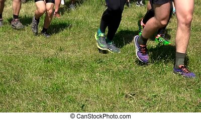Group of runners run though grass in forest. Front view. 4K