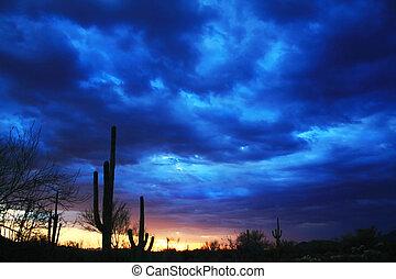 Blue Desert Sky - Tucson Mountain Park