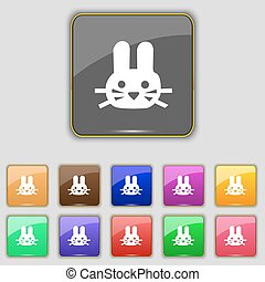Rabbit icon sign. Set with eleven colored buttons for your...