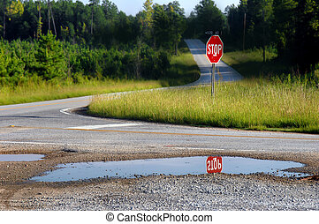End of the Road - Country backroad turns and twists into the...