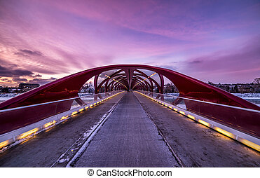 center view of peace bridge downtown calgary alberta winter
