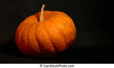 big orange pumpkin spinning on a black background