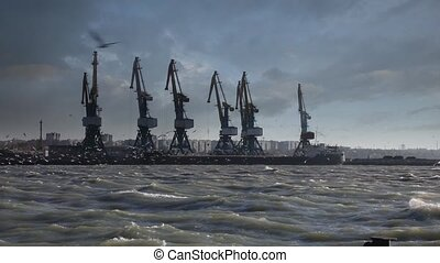 Storm wind in the sea port - Video shot of cargo cranes with...