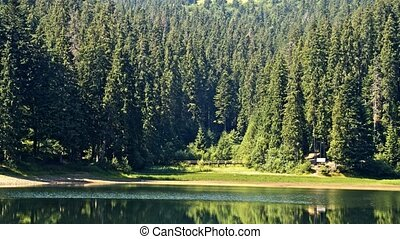 Lake Synevir in Carpathian Mountains in Ukraine.