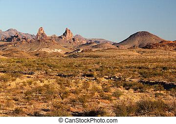 Big Bend National Park - Scenic Desert Landscape in Big Bend...