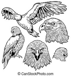 Eagle Tattoo Set - Eagle monochrome tattoo set with sitting...