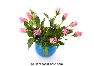 Bouquet pink roses - Cheerful bouquet pink roses in blue...