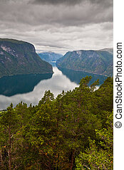 Fjord in Norway with pine trees in the foreground - pictures...