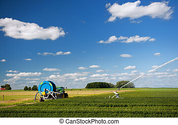 Watering the agriculture fields