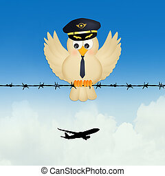 pilot bird on wire