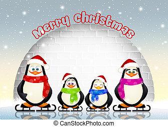 family of penguins - illustration of penguins family