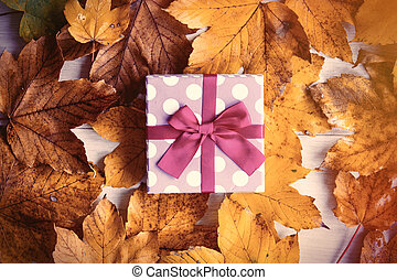 box with autumn maple leaves