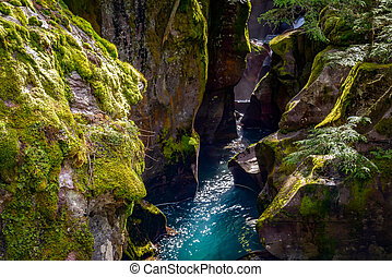 Looking into Avalanche Creek
