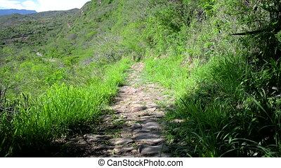 percorso,  colombia, rurale