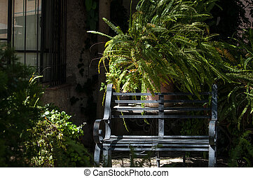 La banca en el jardin - Una banca de fierro que se encuentra...